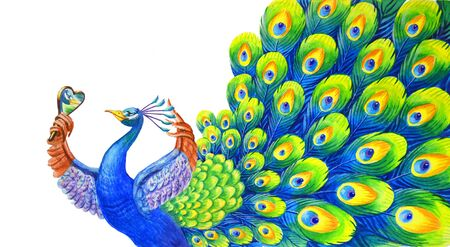 A beautiful peacock admires himself in the mirror. Confident handsome man. Funny watercolor illustration in cartoon style for background, decoration, psychological articles and other fields of application.