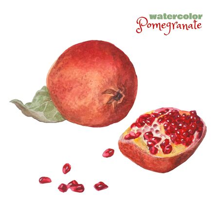 Watercolor illustration - juicy ripe pomegranate. Red fruit isolated on a white background.