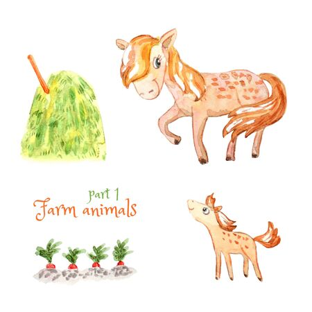 Family of cute pets: horse and foal. Vegetable garden and haystack. Isolated on white. Watercolor cartoon illustration. A collection of farm animals for design and decoration of children's products. Imagens - 133152632