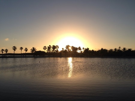 Sunset in Mattheson Hammock Park Miami