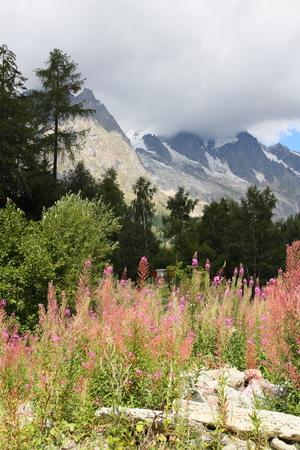 courmayeur: Mont Blanc paisaje de monta�a en Courmayeur, Italia