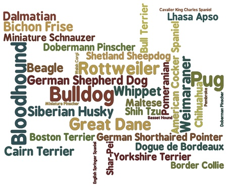 bloodhound: Dog breed themed word cloud on white background