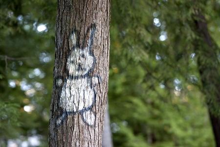 Graffiti white rabbit spray painted on a tree with copy space Zdjęcie Seryjne
