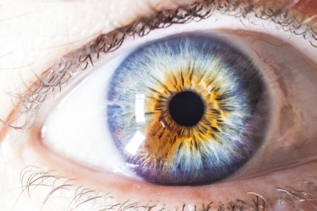 extreme macro: Extreme close up of multicolored eye of human