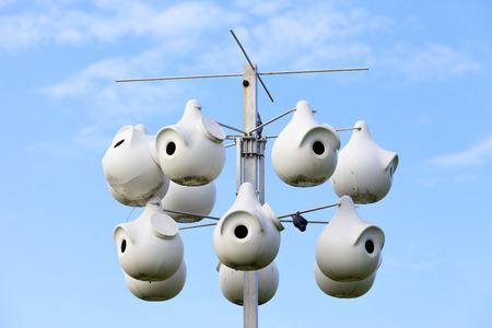 A purple martin gourd rack in front of a blue sky.