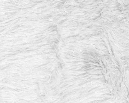 animal hair: White pattern soft animal fur and hair texture