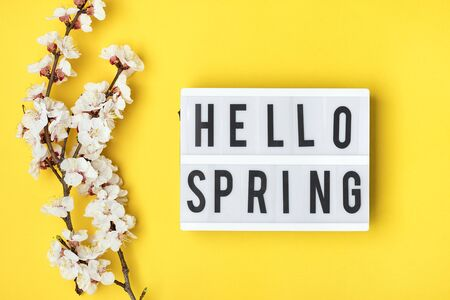 Sprigs of the apricot tree with flowers, lightbox with text Hello spring on yellow background. The concept of spring came. Banco de Imagens - 150078303
