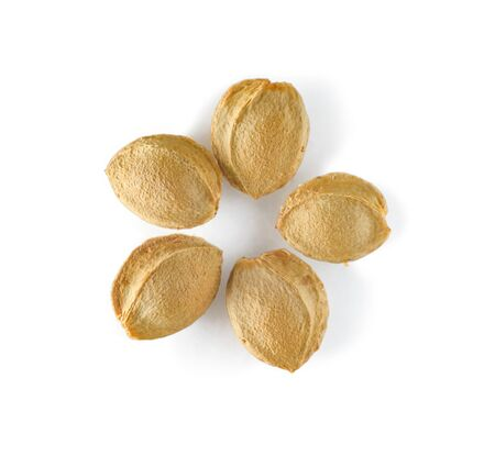 Apricot kernels in a shell isolated on a white background. Apricot seeds laid out in the form of a flower