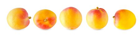 Macro isolated apricots on white background in different positions. Retouched apricots on white background. 스톡 콘텐츠