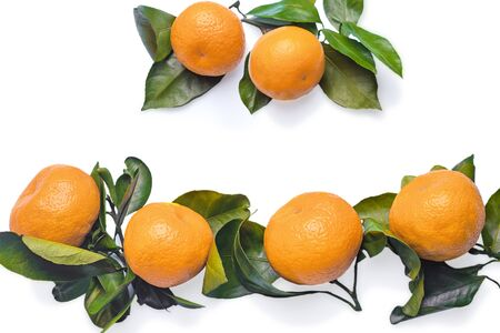 Tangerines with leaves on white background. Juicy sweet tangerines Banque d'images