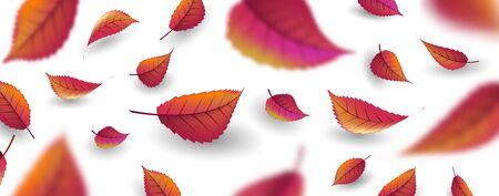 Fond d'automne avec des feuilles oranges rouges et brunâtres tombant sur fond clair avec flou de premier plan, texture d'automne