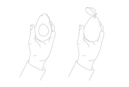 Hand holding an avocado half and pear, sketch hand-drawn linear illustration, male hand showing the fruit, two objects