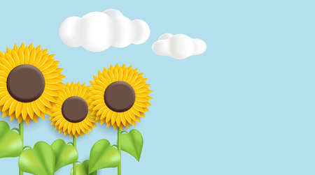 Sunflower 3d illustration on blue background with clouds