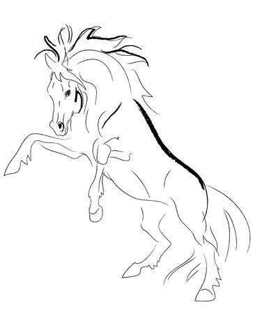 stallion rears vector Stock Vector - 5793021