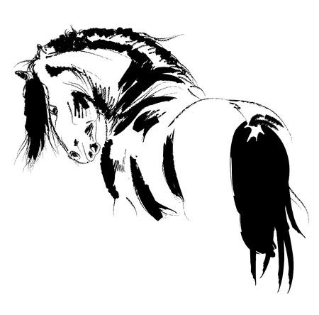 horse saddle: Frisian stallone sketch  Vettoriali