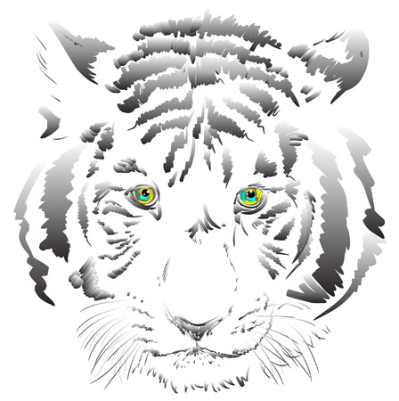 stealth: white tiger vector Illustration