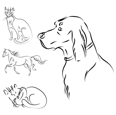 pedigreed: vector animals sketch