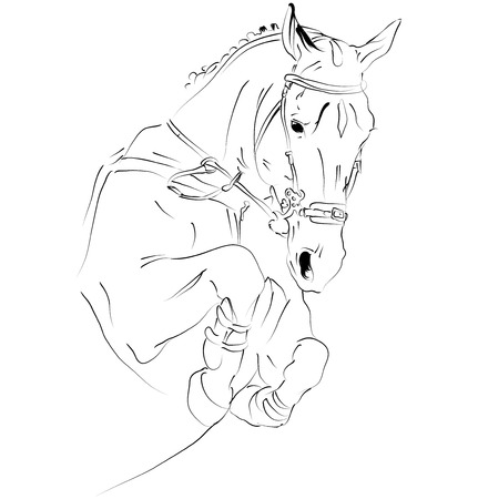 equestrian sport: horse in jump Illustration