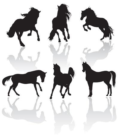 vector horse silhouettes photo