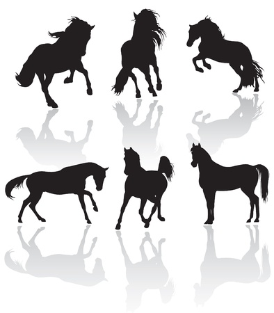 arabian horse: vector horse silhouettes Stock Photo