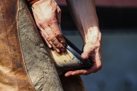 smithery: Farrier holds horse leg Stock Photo
