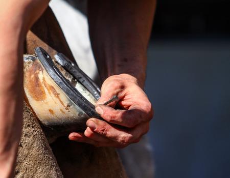 close fitting: hammering the horseshoe close up