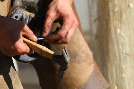 smithery: farrier working close up Stock Photo