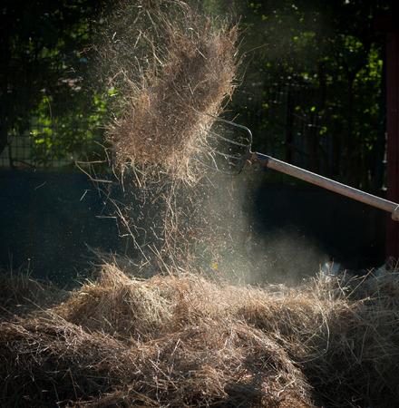 hayfork: hayfork and hay Stock Photo