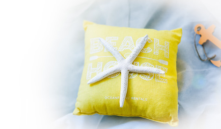 cushion sea star: Holiday travel concept - summertime: starfish, toy pillow, anchor