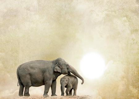elephants on a grunge background