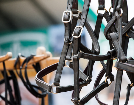 Horse leather halters on market stall Stock Photo - 93391181