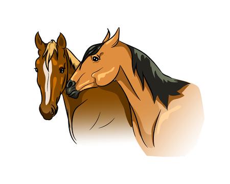 Couple de chevaux communiquant Vecteurs