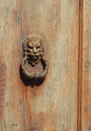 a knocker door with a lion