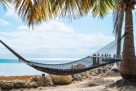 Hammock Hanging on a Palm Tree by the Sea 免版税图像