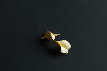 Handmade paper craft origami yellow koi carp fish on black background. Back view Stock Photo