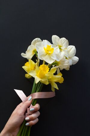 Lovely bouquet of white and yellow narcissus with a pink ribbon in a womans hand with a gentle neat blue manicure on a black background Stock Photo