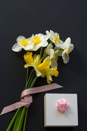 Lovely bouquet of white and yellow narcissus with a pink ribbon and gift box with pink bow on a black background Stock Photo
