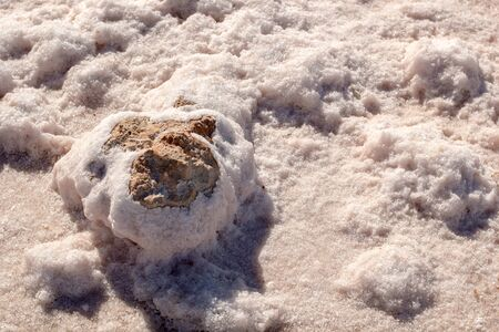 Stones covered by natural pink salt crystals, close up. Salty lake shore background. Spain, Torrevieja.