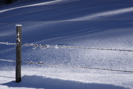 Snow and Hoar Frost on a barbed wire fence  photo
