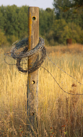 fencing wire: Barbed wire fencing