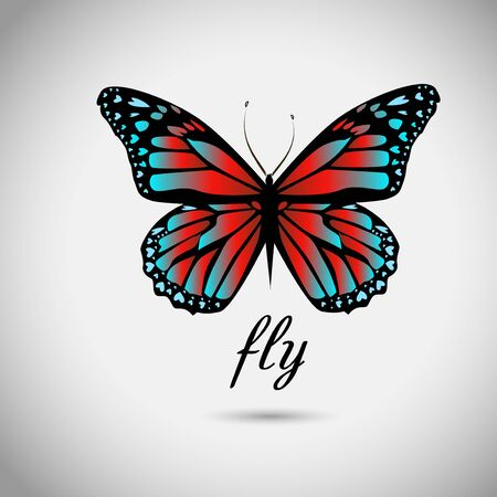Red blue butterfly. Vector illustration
