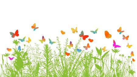 silhouette of grass on white background. Multi-colored butterflies. Vector