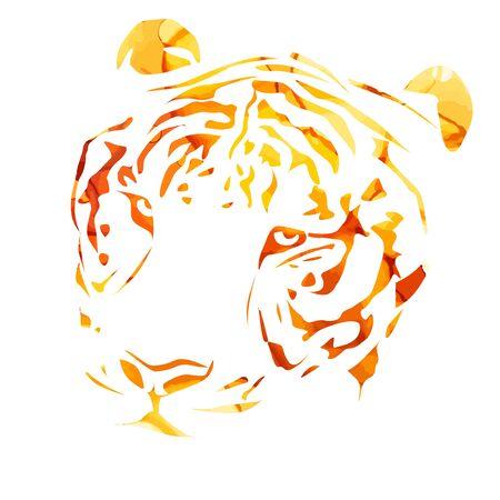 The tigers head. Vector illustration