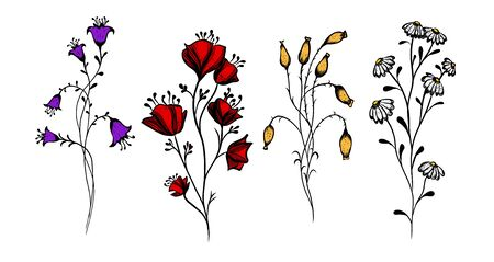 A set of wildflowers. Vector illustration