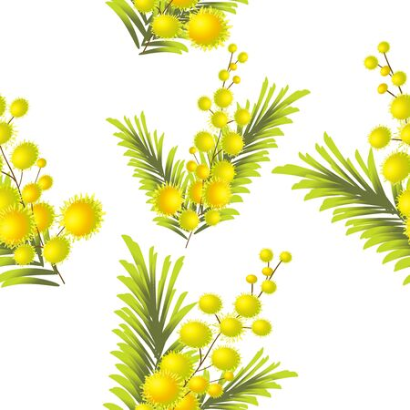 A seamless background of mimosa. Vector illustration