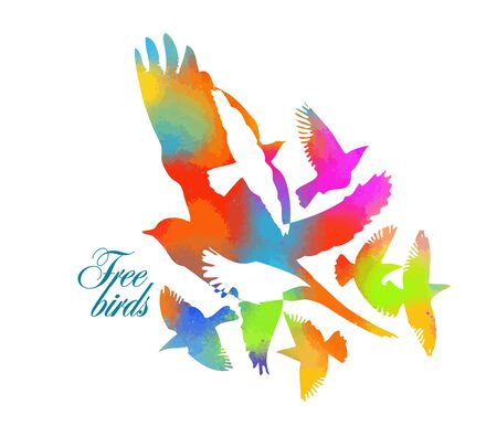 Vector image of bird design on white background.