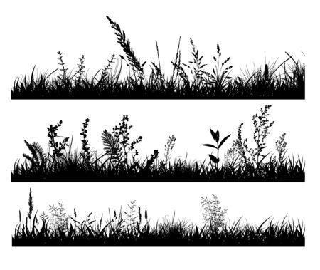 Abstrakter Hintergrund mit schwarzen Silhouetten von Wiesenwildkräutern und -blumen. Wildblumen. Blumenhintergrund. Wildes Gras. Vektor-Illustration.