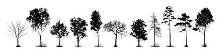 A set of silhouettes of trees. Vector illustration Vecteurs