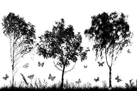 Monochrome landscape with trees and butterflies.