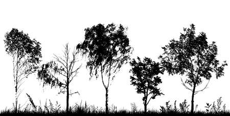 A set of silhouettes of trees. Vector illustration Stock Illustratie